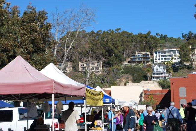 farmers market ventura