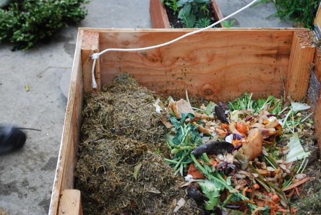 urban compost