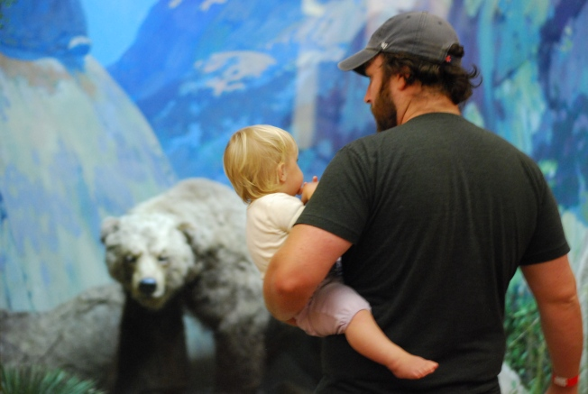 bears oh my!