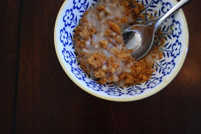 close up rice pudding