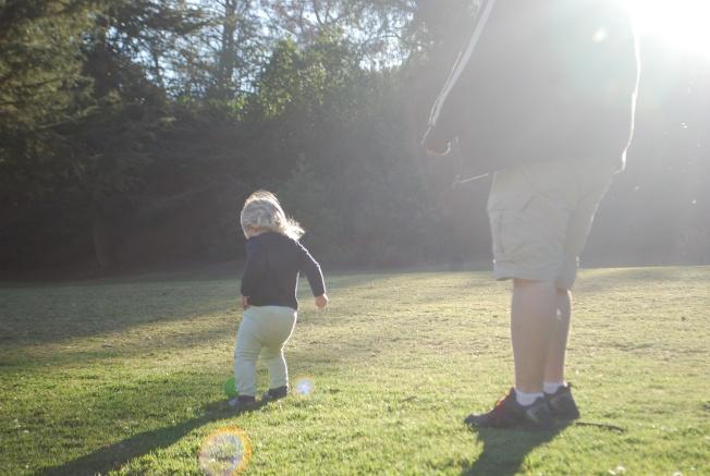 sunlight ball chase