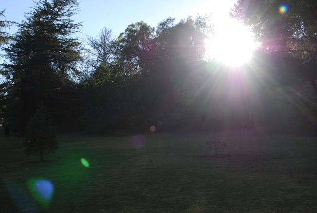 light shines through