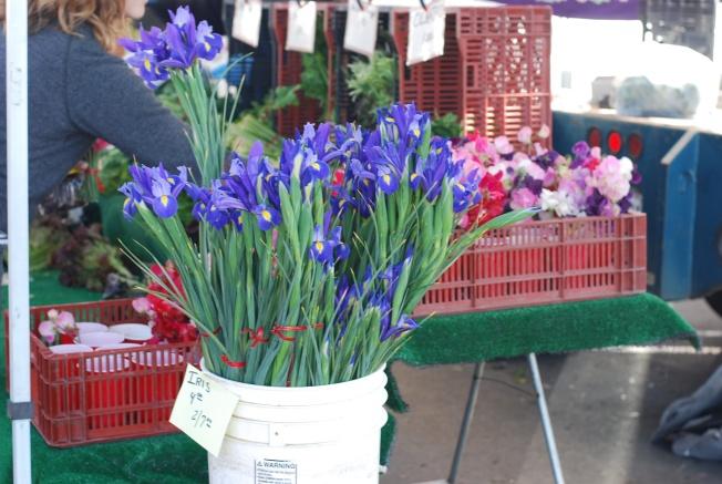 farmers market iris'