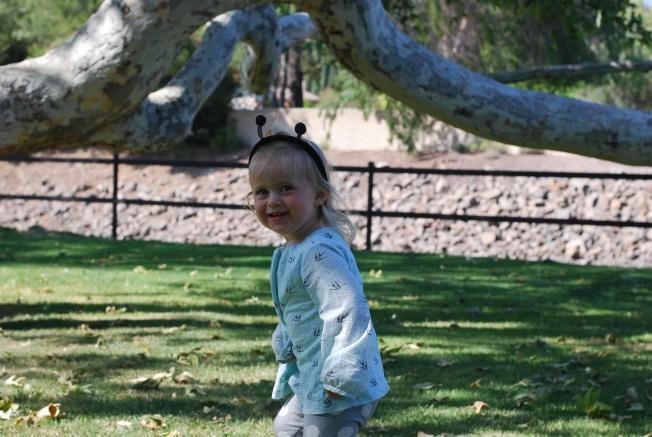 tree fun 2