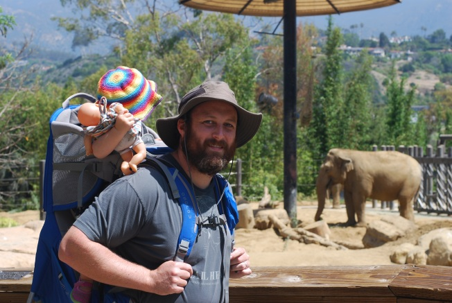 elephante