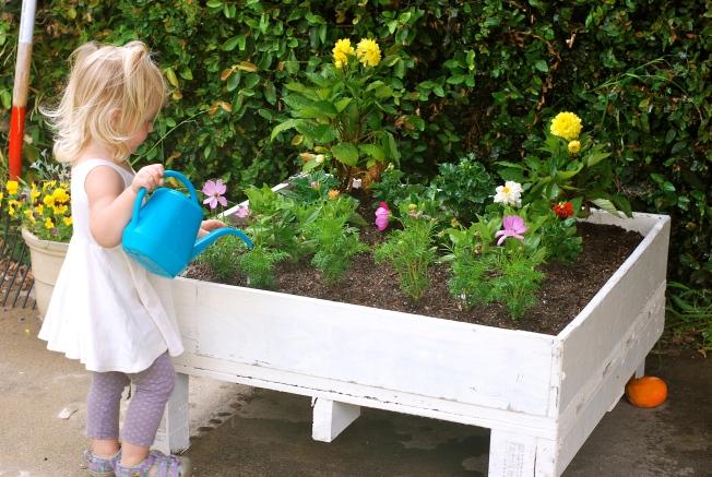 flower garden ellie size