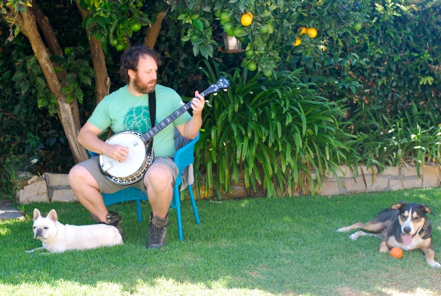 banjo daddy
