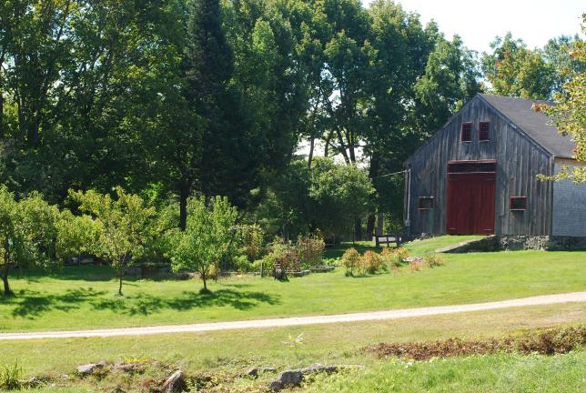 mayo farm