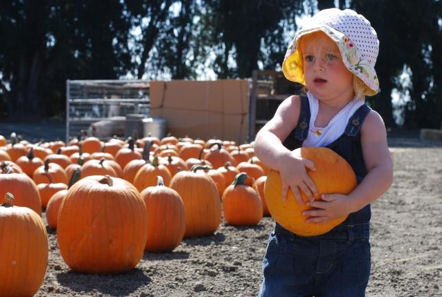 hot pumpkin
